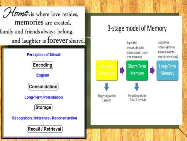 Memory Distortion in Alzheimer's Disease: Deficient Monitoring of Short and Long-term Memory