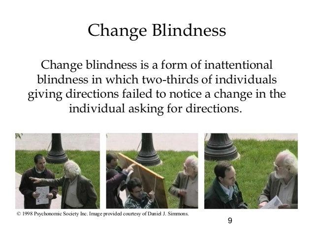 Change Blindness Psychology Definition Blinds