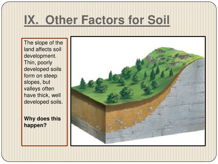what two features do parent material have on soil formation