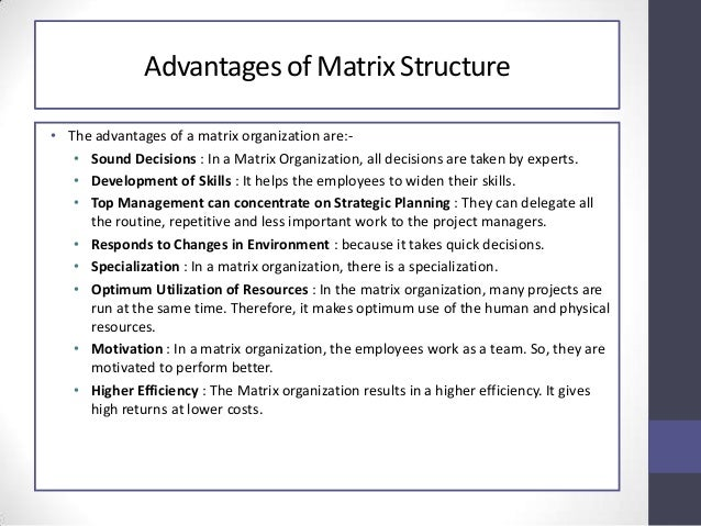 Advantage & Disadvantage of Organizational Structures