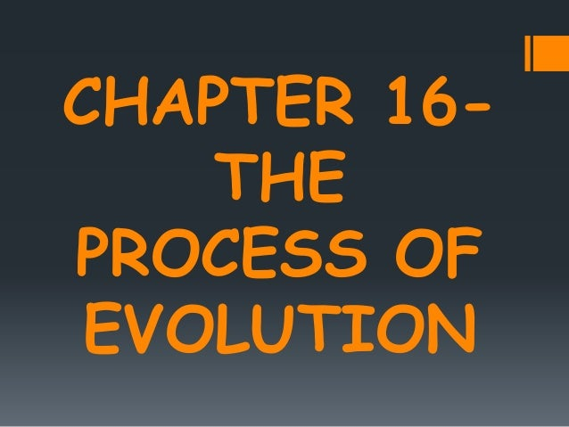 CHAPTER 16- THE PROCESS OF EVOLUTION