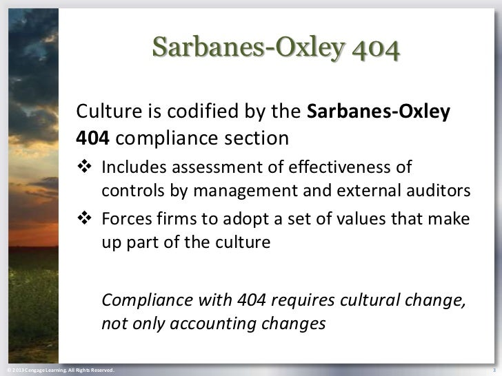 sarbanes oxley section 404