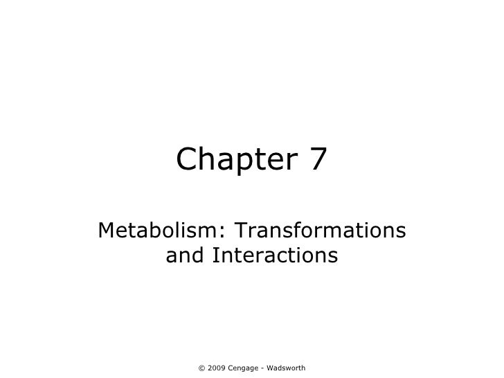 Chapter 7Metabolism: Transformations     and Interactions        © 2009 Cengage - Wadsworth