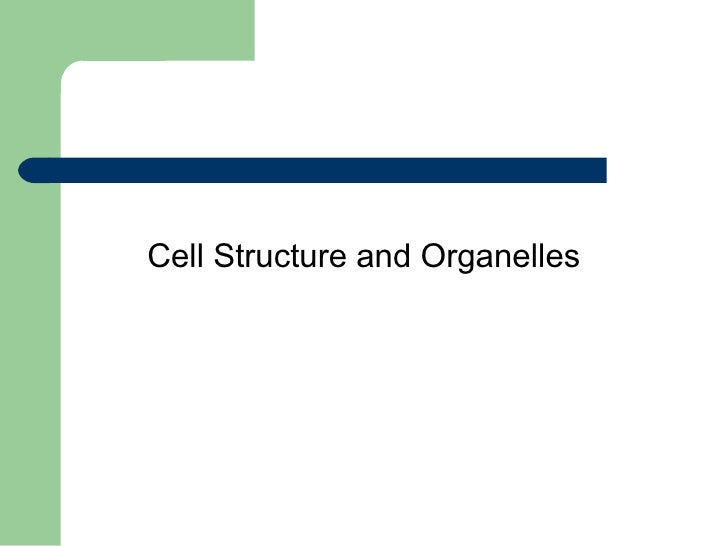 Cell Structure and Organelles