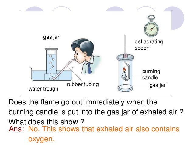 What gas turns limewater cloudy