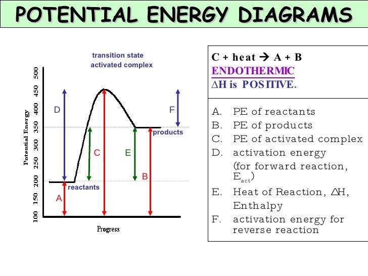 Potential Energy Diagram Equilibrium Trusted Wiring Diagram