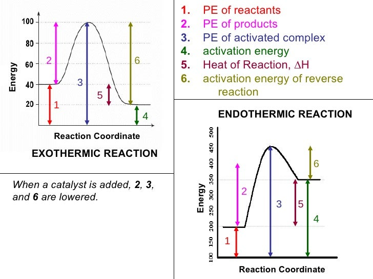 Chapter 7) Kinetics And Equilibrium