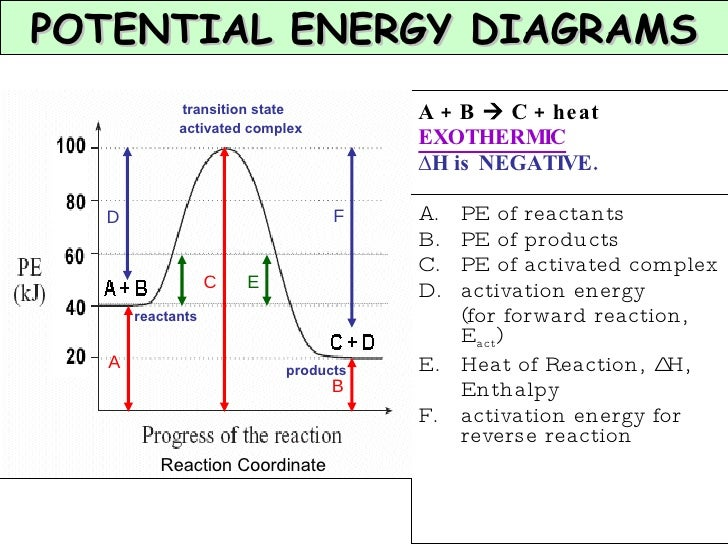 Chapter 7 Kinetics And Equilibrium