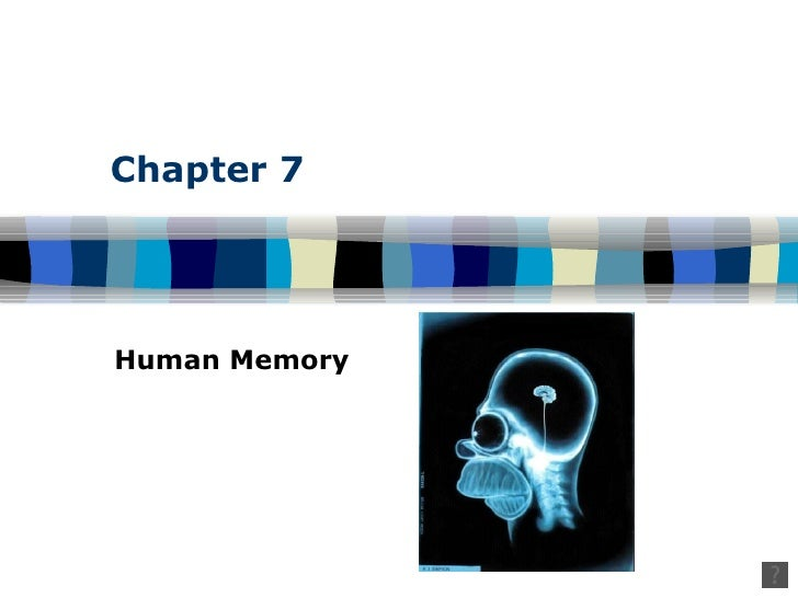 Chapter 7 Human Memory