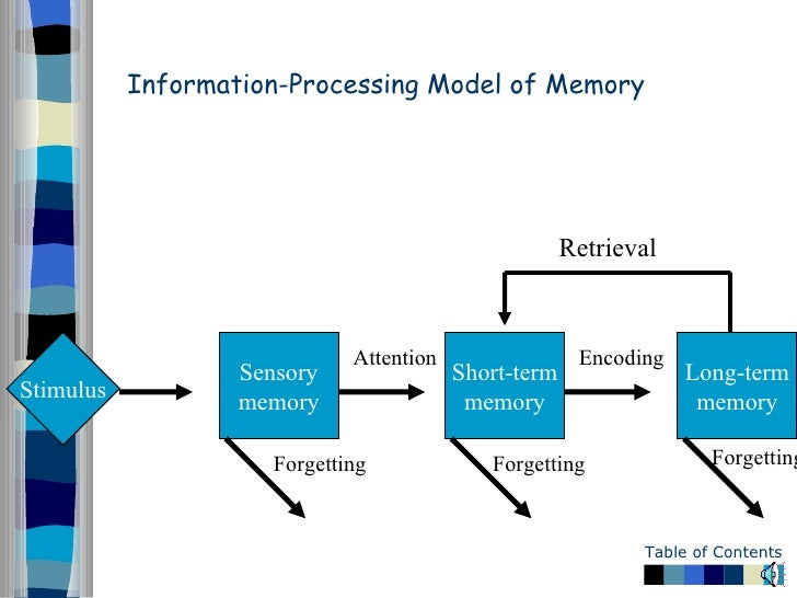 information processing models essay The history of image processing information technology essay abstract the field of image processing is continually evolving during the past five years, there has been a significant increase in the level of interest in image morphology, neural networks, full-color image processing, image data compression, image recognition, and knowledge-based image analysis systems.