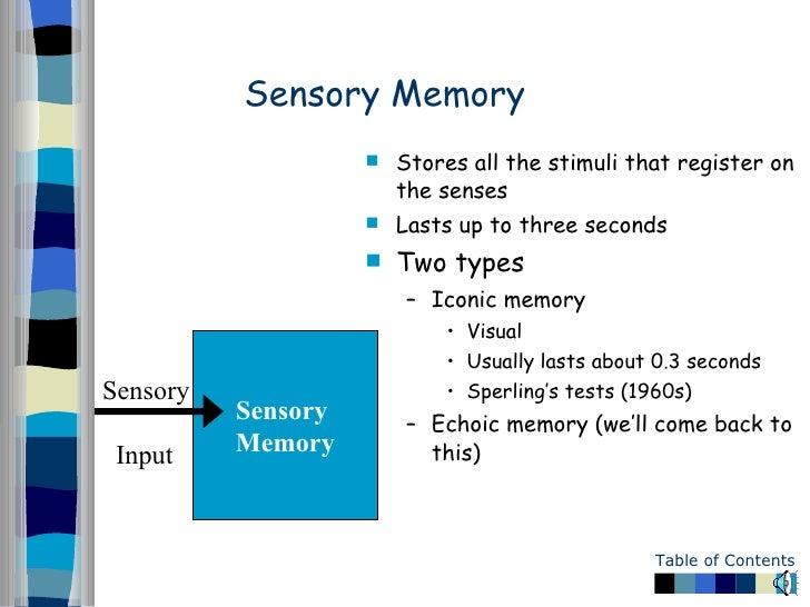 sensory memory fades