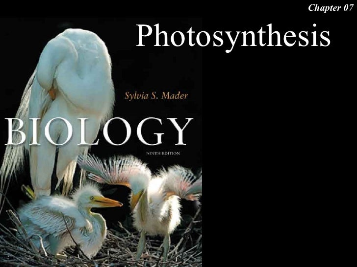 Chapter 07   Photosynthesis