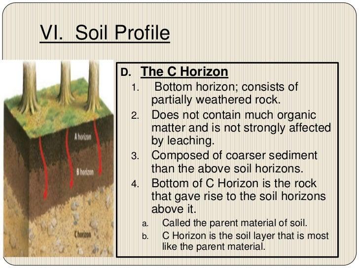 Chapter 7 section 2 nature of soil – Soil Horizons Worksheet