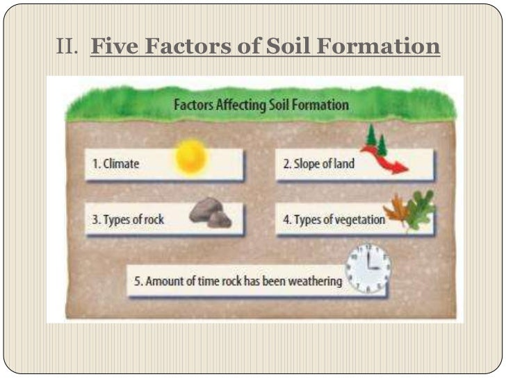 Chapter 7 section 2 nature of soil for Soil forming factors