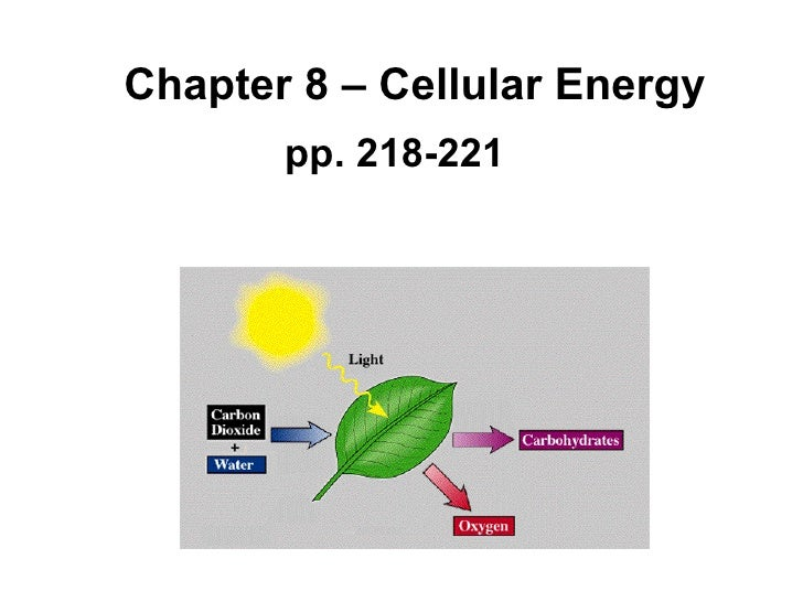 Chapter 8 – Cellular Energy pp. 218-221