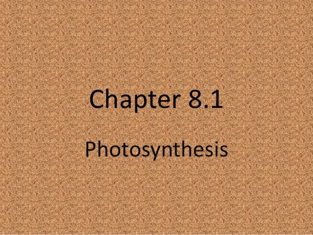 Chapter 8.1 Photosynthesis