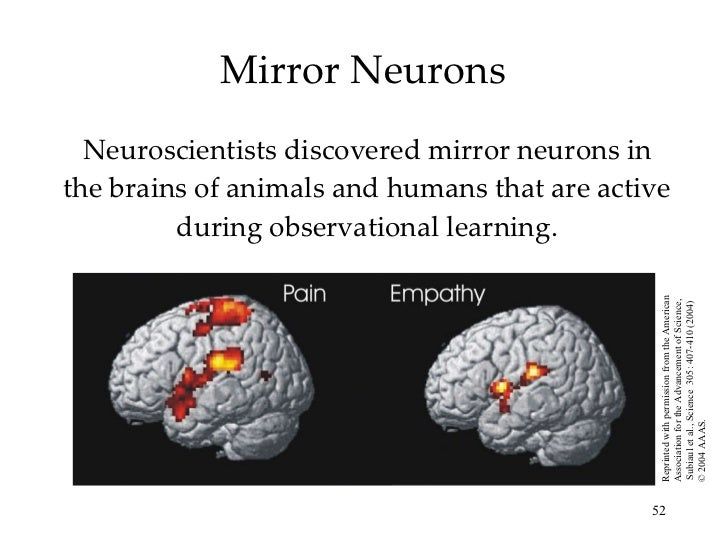 Chapter 8 ap psych learning for Mirror neurons psychology definition