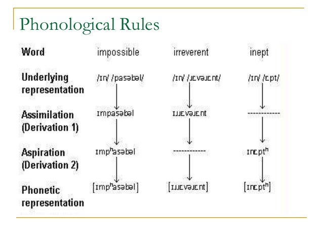 Nice ... 14. Phonological Rules Definition A Phonological Derivation ...