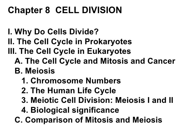 Chapter 8  CELL DIVISION I. Why Do Cells Divide? II. The Cell Cycle in Prokaryotes III. The Cell Cycle in Eukaryotes A. Th...