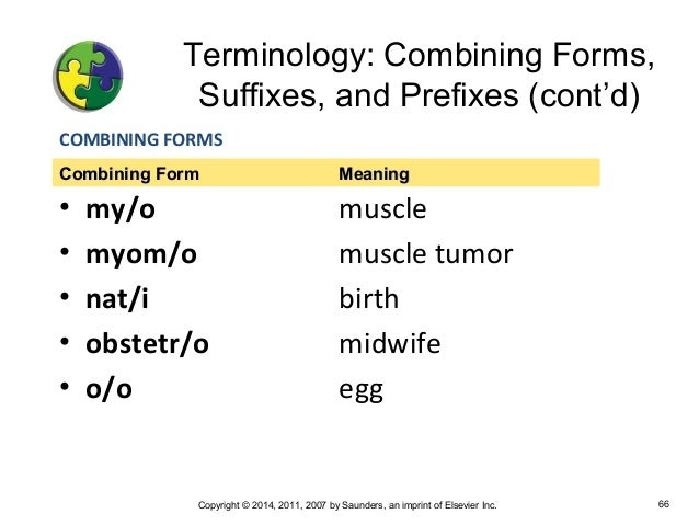 Chapter 8 Medical Terminology