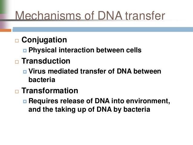 Genetic ysis and Mapping in Bacteria and Bacteriophages on gene drawing, gene testing, gene editing, gene concept map, gene technology, gene science, gene biology, gene identification, gene cloning, gene linkage,
