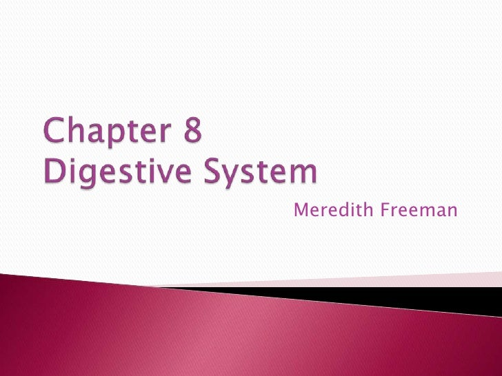 Chapter 8Digestive System<br />Meredith Freeman<br />