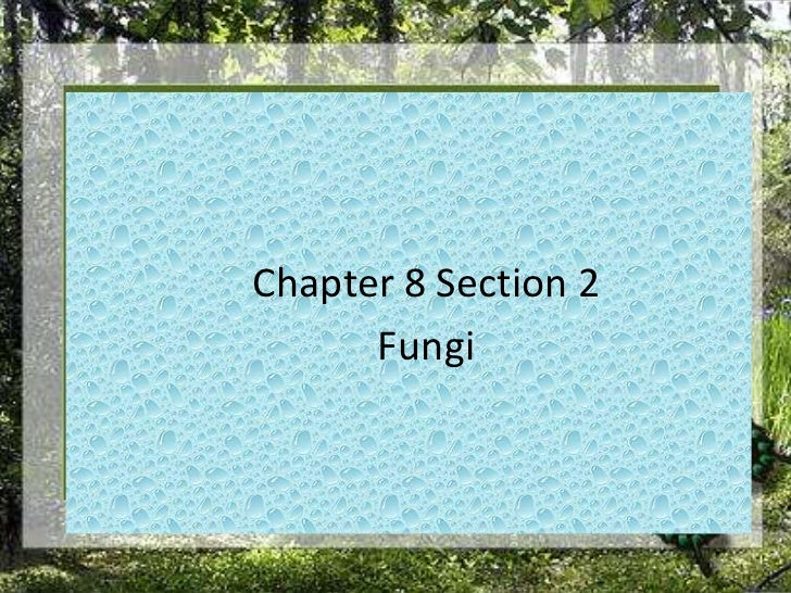 Chapter 8 Section 2<br />Fungi<br />