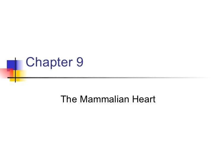 Chapter 9 The Mammalian Heart
