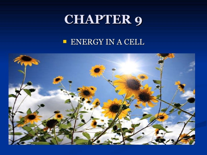 CHAPTER 9 <ul><li>ENERGY IN A CELL </li></ul>