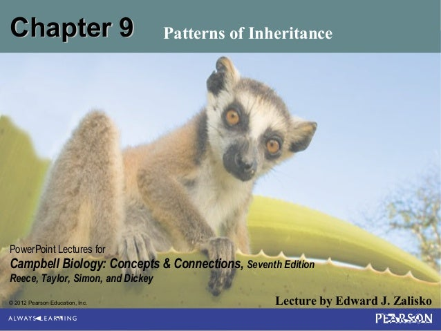 Chapter 9  Patterns of Inheritance  PowerPoint Lectures for  Campbell Biology: Concepts & Connections, Seventh Edition Ree...