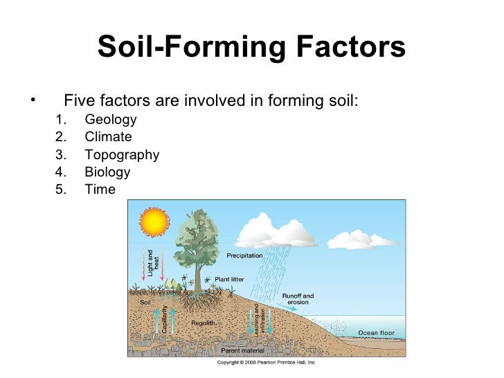 Chapter twelve for Soil forming factors