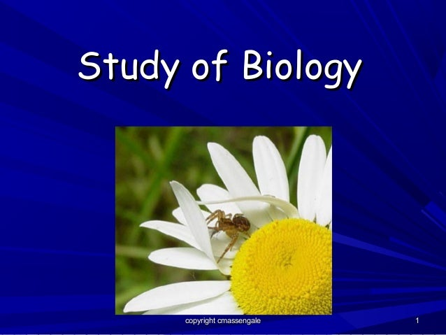 Study of Biology      copyright cmassengale   1