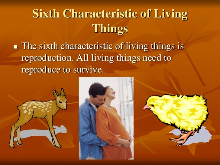 """the 8 characteristics of living things Characteristics of living things defining a living thing is a difficult proposition, as is defining """"life""""—that property possessed by living things however, a living thing possesses certain properties that help define what life is."""