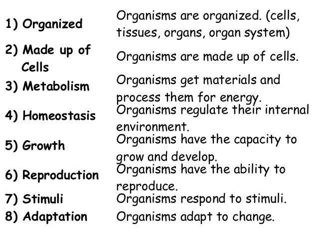 essay about characteristics of living things All living things have 7 characteristics: nutrition, respiration, growth, excretion, movement, reproduction and sensitivity living organisms are.