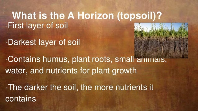 Characteristics of soil for Characteristics of soil
