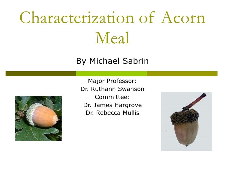 Characterization of Acorn Meal By Michael Sabrin Major Professor: Dr. Ruthann Swanson Committee: Dr. James Hargrove Dr. Re...