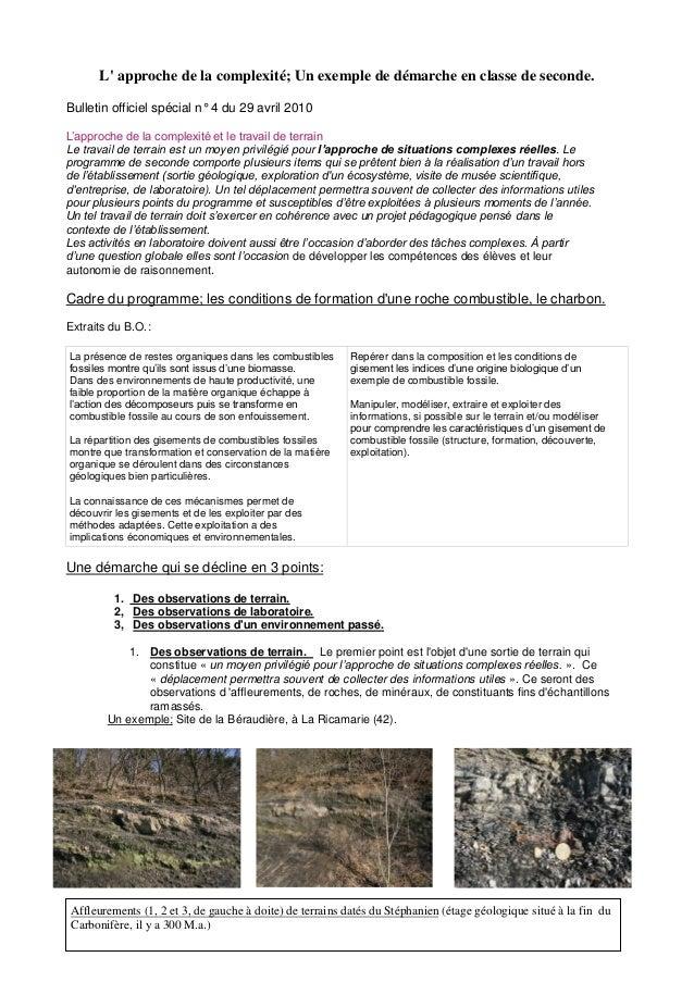 L' approche de la complexité; Un exemple de démarche en classe de seconde. Bulletin officiel spécial n° 4 du 29 avril 2010...