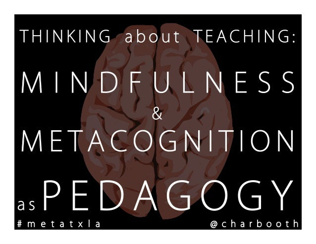 Thinking about Teaching: Mindfulness and Metacognition as Pedagogy