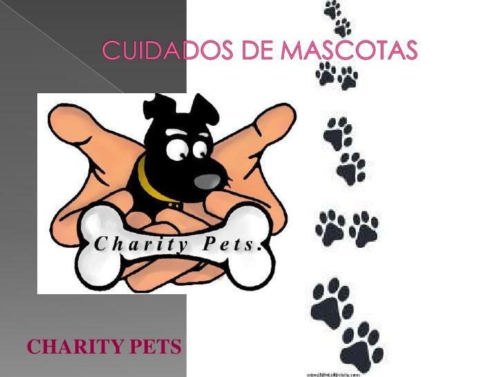 CHARITY PETS