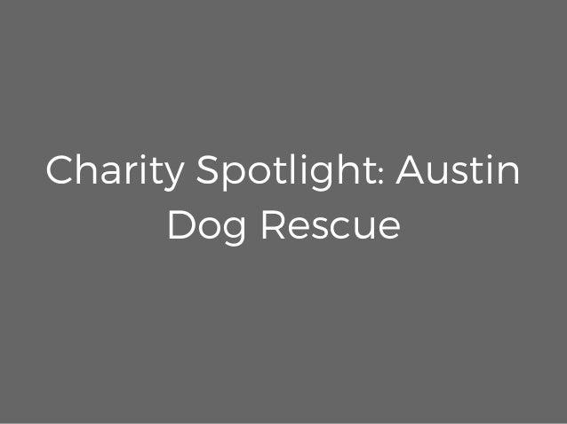 Charity Spotlight: Austin Dog Rescue
