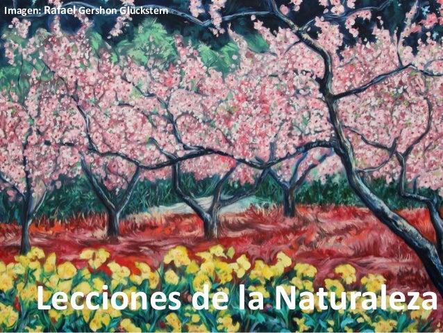 Lecciones de la Naturaleza Imagen: Rafael Gershon Glückstern