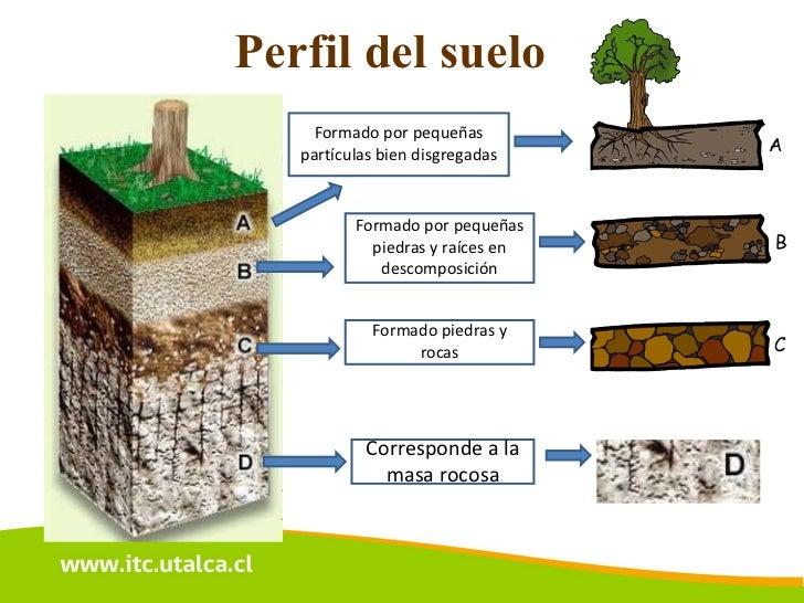 Charla act 1 for Como estan formados los suelos