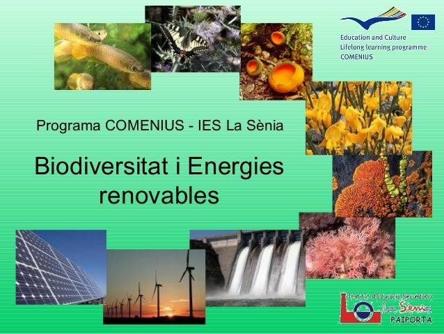 Programa COMENIUS - IES La Sènia  Biodiversitat i Energies renovables