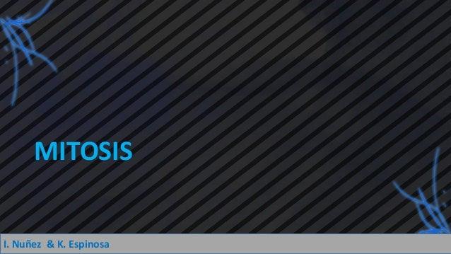 Mitosis y Meiosis.pdf Slide 2