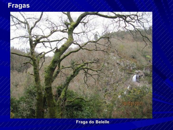 Fragas Fraga do Belelle