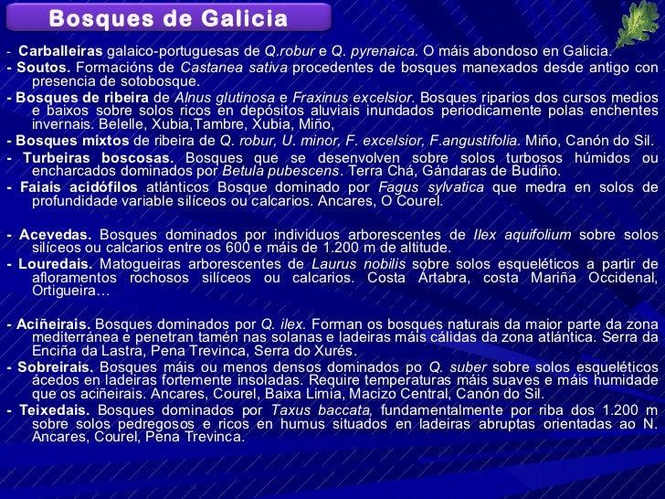 <ul><li>-  Carballeiras  galaico-portuguesas de  Q.robur  e  Q. pyrenaica.  O máis abondoso en Galicia. </li></ul><ul><li>...