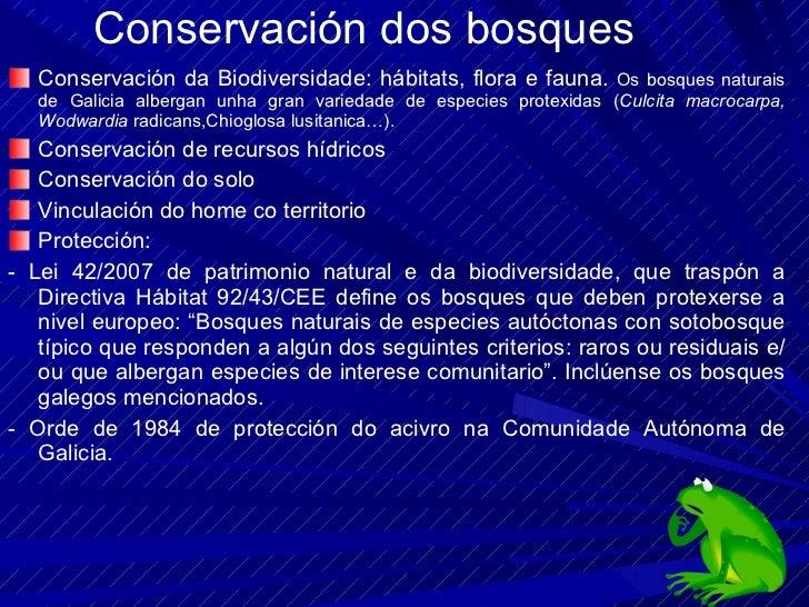 Conservación dos bosques <ul><li>Conservación da Biodiversidade: hábitats, flora e fauna.  Os bosques naturais de Galicia ...
