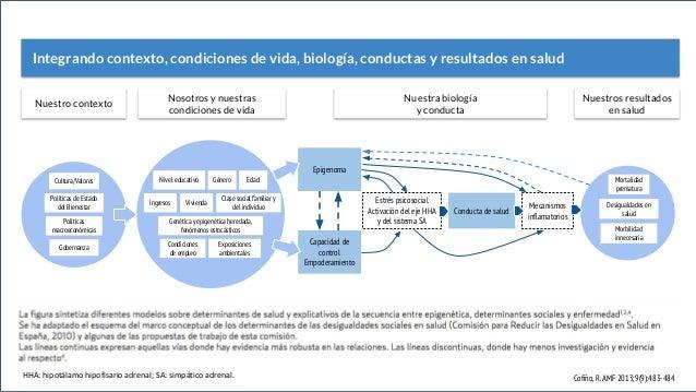 Políticas macroeconómicas Gobernanza Políticas de Estado del Bienestar Cultura/Valores Clase social familiar y del individ...