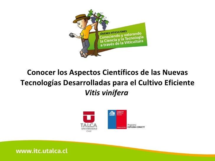 Conocer los Aspectos Científicos de las Nuevas Tecnologías Desarrolladas para el Cultivo Eficiente  Vitis vinífera
