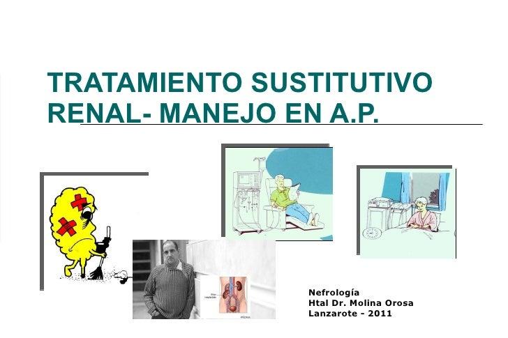 TRATAMIENTO SUSTITUTIVO RENAL- MANEJO EN A.P. Nefrología Htal Dr. Molina Orosa Lanzarote - 2011